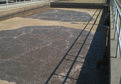 Cationic Flocculants for Municipal Wastewater Treatment