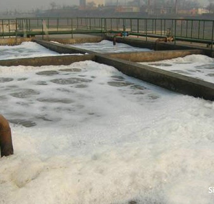Polyacrylamide Used in Sludge Treatment